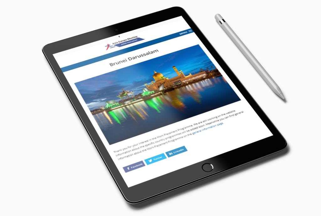 API WordPress website
