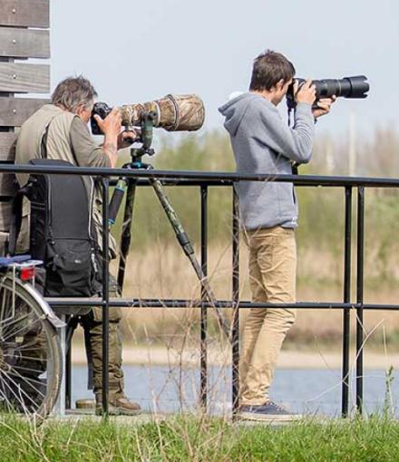 Website laten maken in Sint-Niklaas