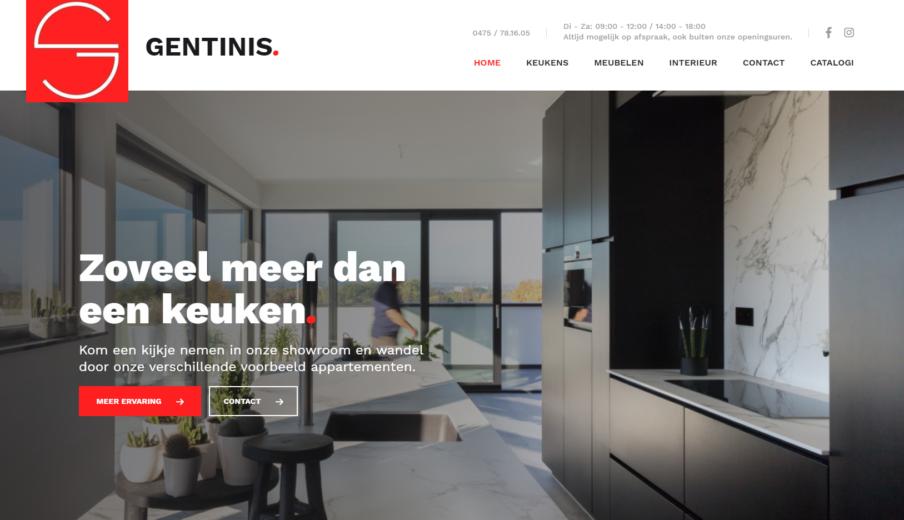 Professionele Website Gentinis Oost-Vlaanderen